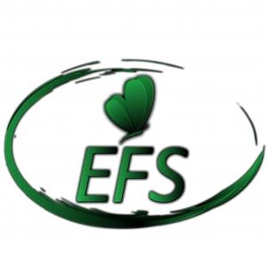 ef-s.at